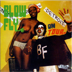 blowfly_on_tour__32375.1407170948.500.750